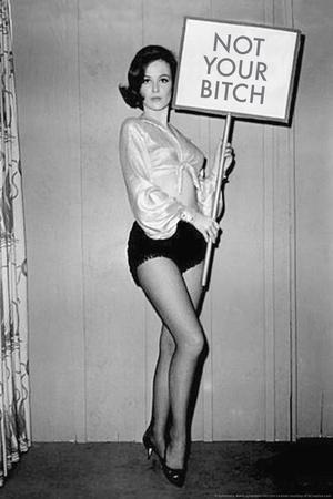 Not Your Bitch Pinup Funny Plastic Sign