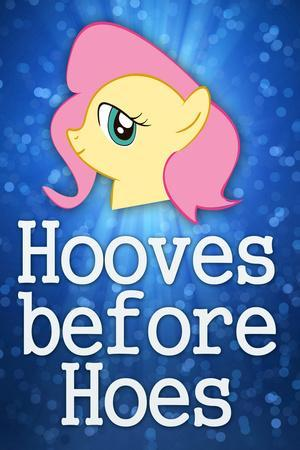Hooves Before Hoes Brony Plastic Sign