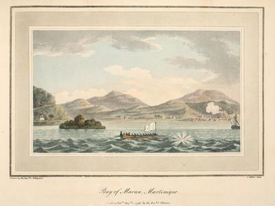 Bay of Maran, Martinique, Illustration from 'An Account of the Campaign in the West Indies' by…