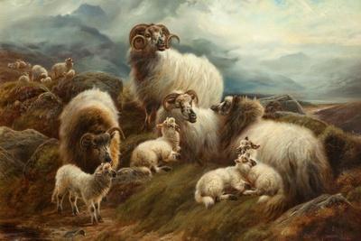 Sheep in a Landscape, 1894