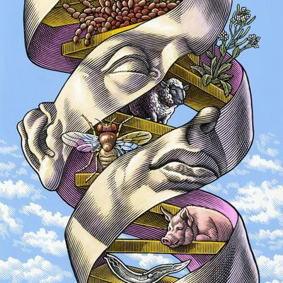 DNA In All Living Things, Artwork
