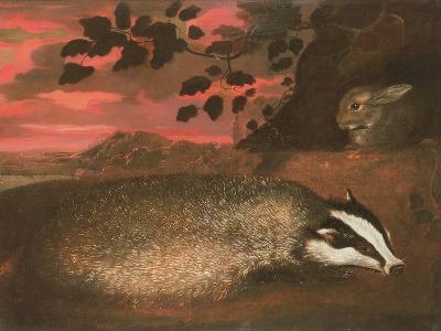 Badger, 17th Century