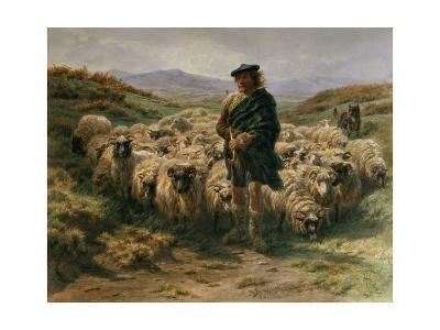 The Highland Shepherd, Watercolour