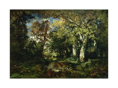 The Forest at Fontainebleau, 1870
