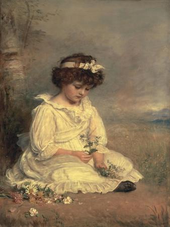 Little Speedwell's Darling Blue, 1892