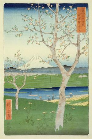 Fuji from Koshigaya, Mushashi, No.14 from the Series '36 Views of Mt. Fuji', ('Fuji Saryu Rokkei')