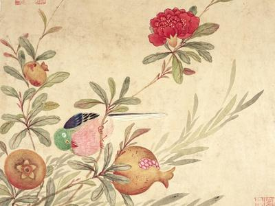 One of a Series of Paintings of Birds and Fruit, Late 19th Century