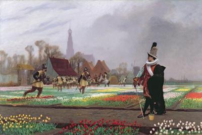 The Tulip Folly, 1882