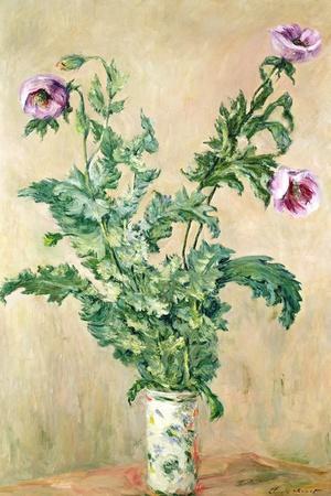 Poppies, C.1882