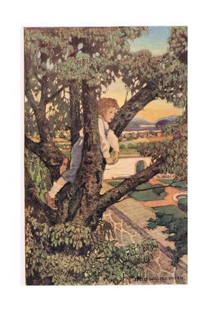 A Boy in a Tree, from 'A Child's Garden of Verses' by Robert Louis Stevenson, Published 1885