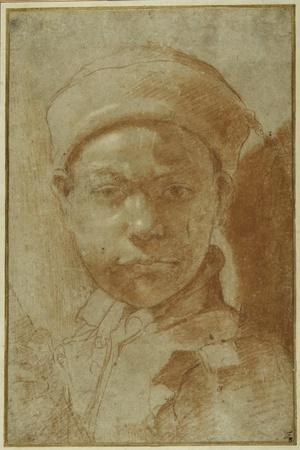 Portrait of a Youth, Bust-Length, Wearing a Round Cap