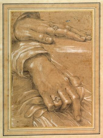 Study of a Man's Hands