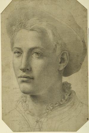 Portrait Head of a Youth Wearing a Cap, C.1530-40