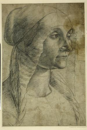 Head of a Woman Wearing a Coif