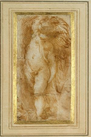 A Putto Turned to the Left