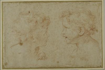 Studies of the Head and Left Hand of a Putto
