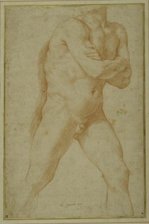 Nude Man Striding Forward, with Arms Folded and Looking over This Right Shoulder