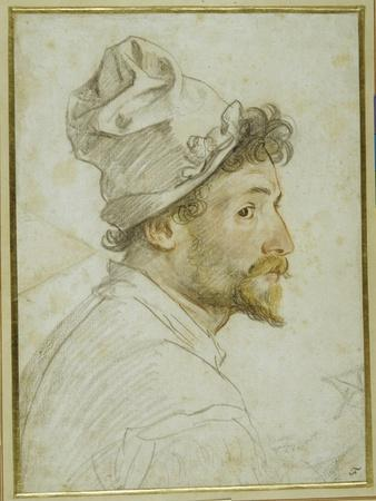 Head and Shoulders of a Bearded Man Wearing a Cap