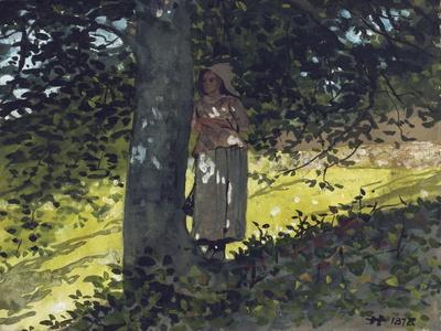 A Shady Spot, Houghton Farm, 1878