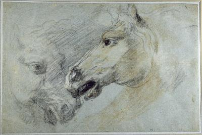 Two Studies of a Horse's Head