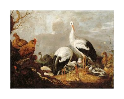 Storks, Mallards, Chickens, a Heron, a Frog and Other Birds in a River Landscape