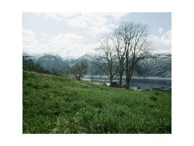 Sogne Fjord