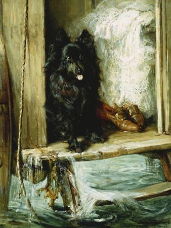 Left in Charge - a Black Pomerain on the Steps of a Bathing Machine
