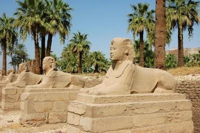 View of the Avenue of Sphinxes Added to the Temple by the Pharaoh Nectanebo I to Connect Luxor to…