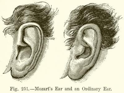 Mozart's Ear and an Ordinary Ear