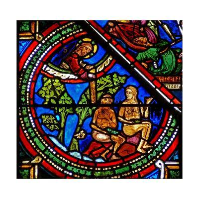 Window W15 Depicting the Good Samaritan Window: Adam and Eve Cover their Nakedness