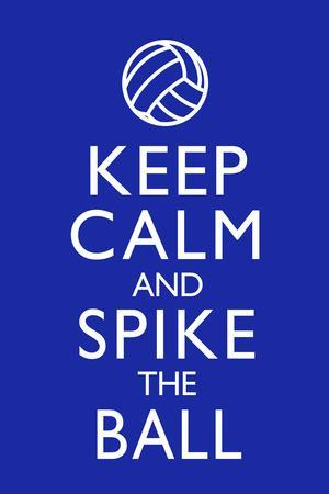 Keep Calm and Spike the Ball Volleyball Plastic Sign