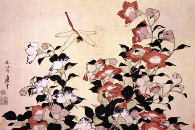 Katsushika Hokusai Chinese Bell Flowers and a Happy Dragon-fly Plastic Sign