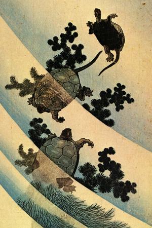 Katsushika Hokusai Turtles Swimming Plastic Sign