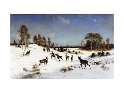 Deer in a Wooded Winter Landscape