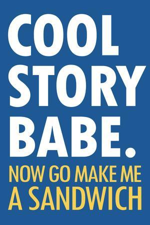Cool Story Babe Now Make Me a Sandwich Humor Plastic Sign