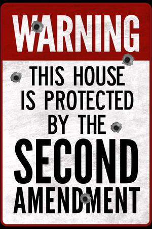 This House Protected By the Second Amendment Plastic Sign