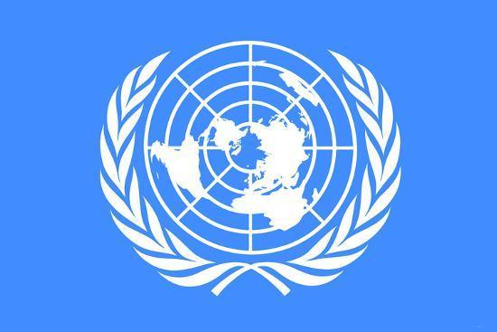 United Nations Flag Plastic Sign Plastic Sign at ...
