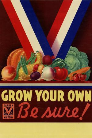 Grow Your Own Be Sure Safe Food WWII War Propaganda Plastic Sign