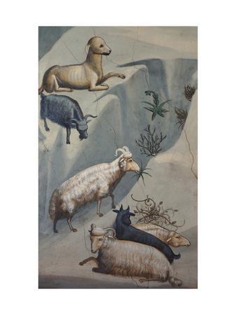 Dream of Joachim, Sheep