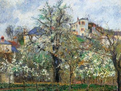 Vegetable Garden and Trees in Blossom, Spring, Pontoise