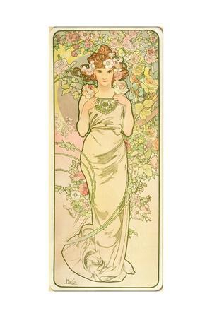 The Flowers: Rose, 1898