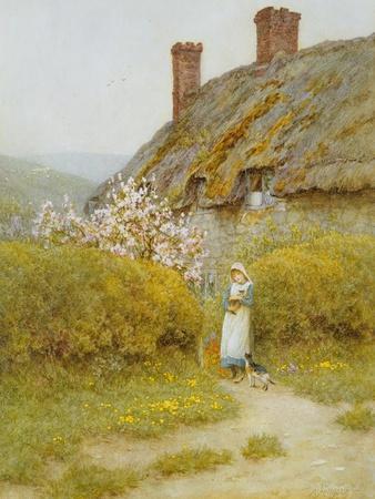A Dorsetshire Cottage