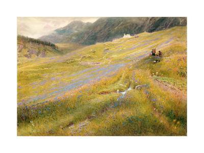 The Alpine Summer, 1874