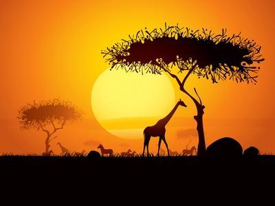 Tranquil Sunset Scene In Africa. Silhouette Animals And Trees In Africa Sunset Background