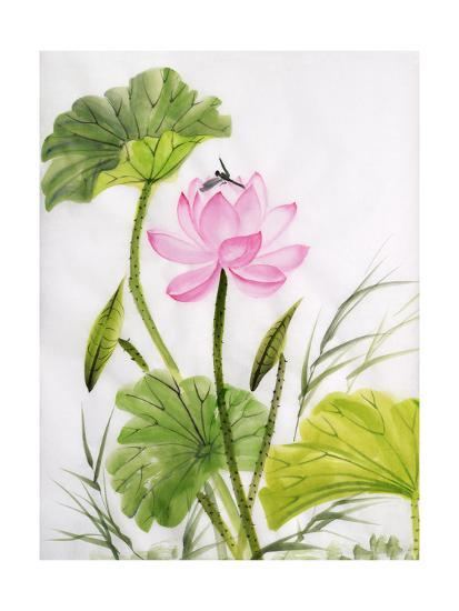 Watercolor Painting Of Lotus Flower Poster By Surovtseva At
