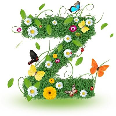 "Beautiful Spring Letter ""Z"""