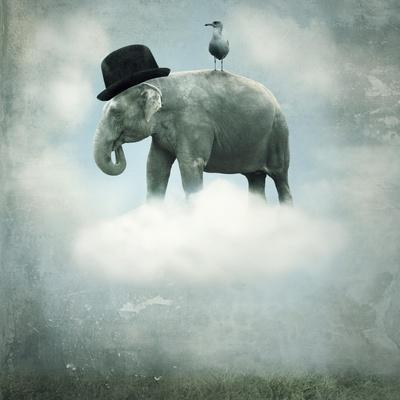 Fantasy Elephant Flying