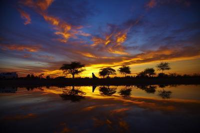 Sunrise, Okaukuejo Rest Camp, Etosha National Park, Namibia