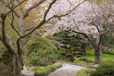 Spring Scenic in Lithia Park, Ashland, Oregon, USA