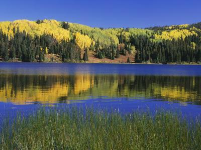 Autumn Scenic at Lost Lake, Gunnison National Forest Colorado, USA